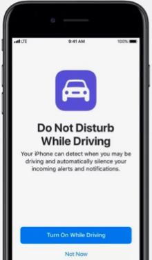 apple do not disturb driver